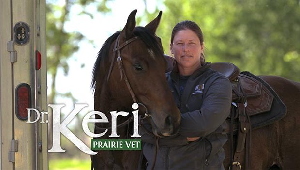 Dr Keri: Prairie Vet / Link to Bell Media