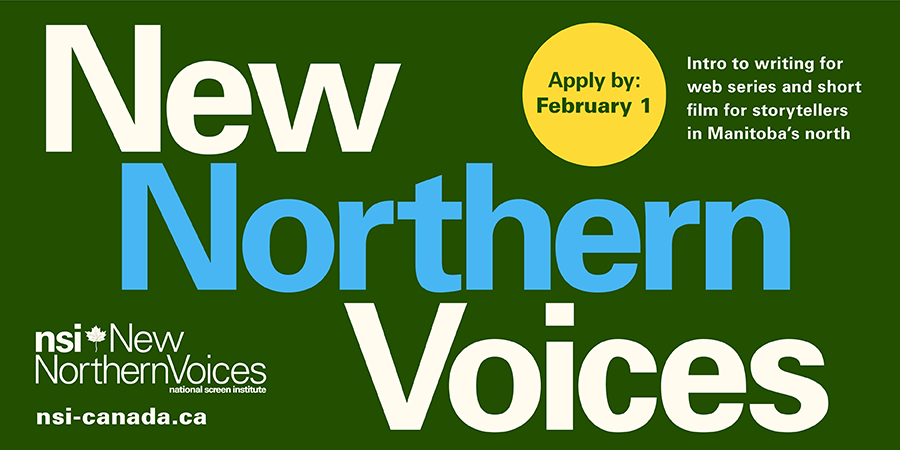 About NSI New Northern Voices